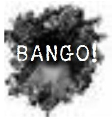 Sign up for BANGO!